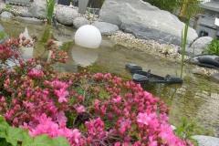 Ausstellung Lange - Teichanlage (2)